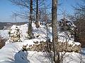 Ruine Pfannenstiel 09, Donautal.JPG