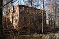 Ruiny pałacu myśliwskiego – Grodziszcze (zetem) 3.jpg