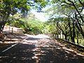 São José do Rio Pardo-SP - panoramio (1).jpg
