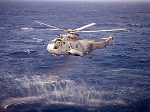 SH-3H Sea King HS-2 in flight 1987.JPEG