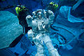 STS-135 Sandy Magnus in the waters of the Neutral Buoyancy Laboratory.jpg