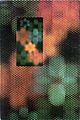SWTPC Catalog 1972 Cover2.jpg