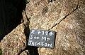S of Mt Jackson breccia with megacrystic granite clast.jpg