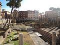 Sacred area in Largo di Torre Argentina.JPG