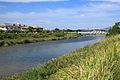 Sakai River, Aizuma-cho Kariya 2013.JPG