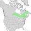Salix pellita range map 1.png