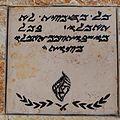 Samaritan Passover sacrifice site IMG 2136.JPG