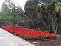 San Anton Attard Gardens 02.jpg