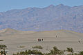 Sand Dunes (5814531968).jpg