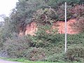 Sandstone cliff on the banks of the R. Frome, Ridge. - geograph.org.uk - 268267.jpg