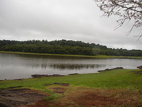 Vue d'un étang