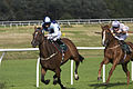 Scottish Racing Handicap 2929 (4924049296).jpg