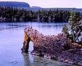 Sea Lion Arch and Sleeping Giant.jpg