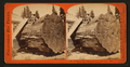 Section of the Original Big Tree - near view, Mammoth Grove, Calaveras County, by Lawrence & Houseworth 2.png
