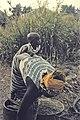 Senegal1974-21.jpg