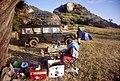 Serengeti camp Lobo JF.jpg