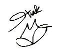 Shakirasignature.jpg