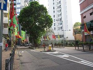 Shau Kei Wan - Shau Kei Wan Main Street East and fig tree