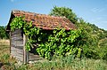 Shed in the vinyards (20120561845).jpg