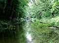 Shropshire Union Canal in Rye Hill Cutting, Staffordshire - geograph.org.uk - 1383031.jpg