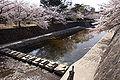 Shukugawa01s3872.jpg