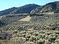 Sierra de Tiscar - 004 (30414317340).jpg