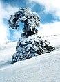 Sierra de las Nieves 1975 17.jpg