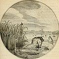 Silenus Alcibiadis, sive, Proteus - vitae humanae ideam, emblemate trifariàm variato, oculis subijciens (1618) (14561520018).jpg