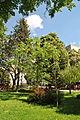 Skver-Chornovola-15056669.jpg