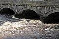 Sligo-14-Garavogue River-2017-gje.jpg
