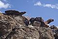 Sloan Canyon NCA (9425193294).jpg