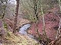 Small Glen Near Abronhill - geograph.org.uk - 147348.jpg
