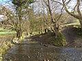 Small stream near Clynmawr - geograph.org.uk - 1132677.jpg