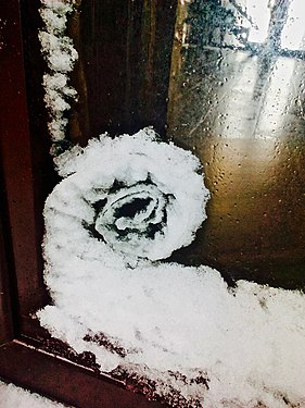 Snow formed by the wind in the form of a spiral on the glass of the stained glass.jpg