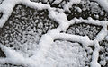 Snow on Pavement (3326471636).jpg