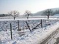 Snowscape Oberkochen Germany February 2012.JPG