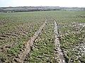 Sodden field, near Downland Farm - geograph.org.uk - 1198276.jpg