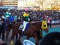 Sound True and Takuya Ono in Tokyo Daishoten at Oi racecourse (31984227275).jpg