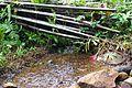 Source d'eau potable à Mboué.jpg