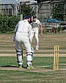 Southwater CC v. Chichester Priory Park CC at Southwater, West Sussex, England 010.jpg