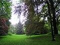 Späth-Arboretum - May 2010 - IMG 8807.JPG