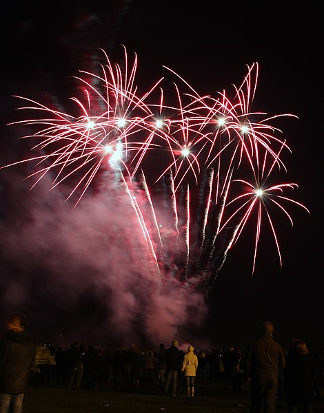 File:Spectators watching fireworks display from Flickr user KSDigital.jpg