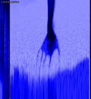 "A spectrogram of the noise at the end of ""My Violent Heart"", one of the tracks on the USB drive found at a concert in Portugal."