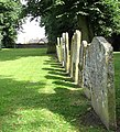 St Mary's church - a row of headstones - geograph.org.uk - 1408881.jpg