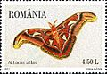 Stamps of Romania, 2011-25.jpg