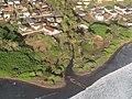 Starr-091112-9467-Calotropis gigantea-aerial view-Waiehu-Maui (24621894429).jpg