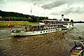 Steam Boat 'Dresden' near Wehlen on the Elbe River (8038875240).jpg