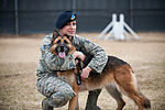 Stella, Bizallion, Guarding the Wolf Pack 140313-F-BS505-251.jpg