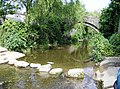 Stepping stones across the Brue - geograph.org.uk - 460274.jpg