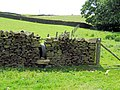 Stile near Cat Gill Wood - geograph.org.uk - 473471.jpg
